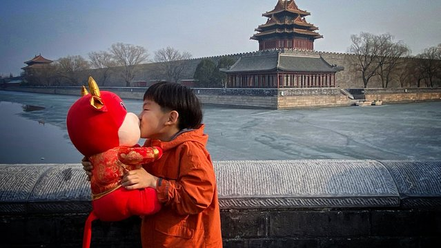 A boy is seen kissing a doll that represents the year of the Ox at the Palace Museum in Beijing, February 12, 2021. (Photo by CFP/China Stringer Network)