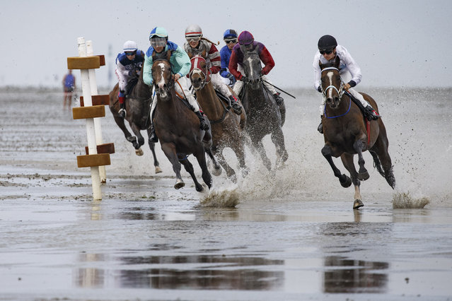 Horses and riders compete in the annual horse buggy races on the mudflats at Duhnen on July 22, 2018 in Cuxhaven, Germany. The races, which in German are known as the Duhner Wattrennen, take place at low tide throughout the day and have been an annual tradition going back to 1902. (Photo by Morris MacMatzen/Getty Images)