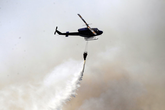 A helicopter dumps water on a forest fire in Valparaiso, Chile, Saturday, March 14, 2015. (Photo by Luis Hidalgo/AP Photo)