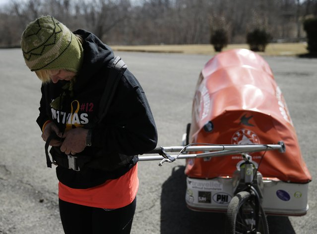 """Sixty-eight year old cross-country runner Rosie Swale-Pope attaches herself to her cart,""""The Icebird"""", in Upperville, Virginia March 13, 2015. (Photo by Gary Cameron/Reuters)"""