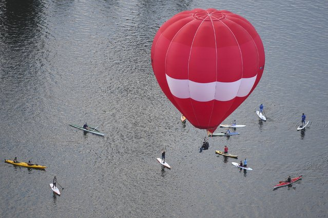 Paddle boarders take a look at a hot air balloon flying over Lake Burley Griffin on the 30th anniversary of Canberra's Balloon Spectacular festival in Australia's capital, March 14, 2016. (Photo by Lukas Coch/Reuters/AAP)