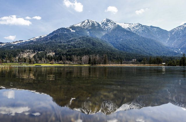 Snow-covered mountaintops are reflected in a small lake in the western Austrian village of Seefeld April 26, 2015. (Photo by Dominic Ebenbichler/Reuters)