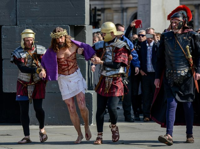 "Actor James Burke-Dunsmore is brought out to  carry a crucifix whilst playing Jesus during The Wintershall's ""The Passion of Jesus"" in front of crowds on Good Friday at Trafalgar Square on March 25, 2016 in London, England. (Photo by Chris Ratcliffe/Getty Images)"
