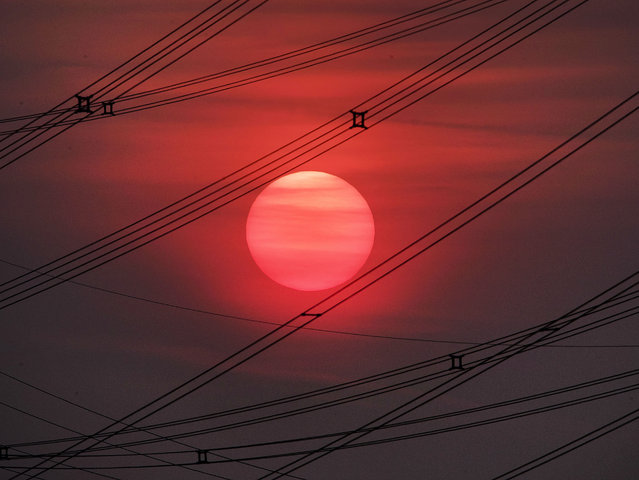 The sun rises between power lines in Frankfurt, Germany, Thursday, May 23, 2019. (Photo by Michael Probst/AP Photo)