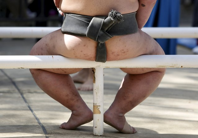 """A sumo wrestler sits on a fence during the annual """"Honozumo"""" ceremonial sumo tournament dedicated to the Yasukuni Shrine in Tokyo, Japan, April 18, 2016. (Photo by Yuya Shino/Reuters)"""