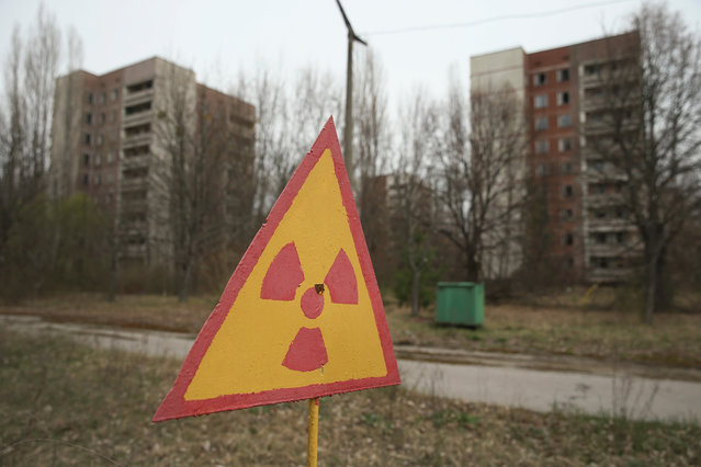 A sign warns of radiation contamination near former apartment buildings on April 9, 2016 in Pripyat, Ukraine. (Photo by Sean Gallup/Getty Images)
