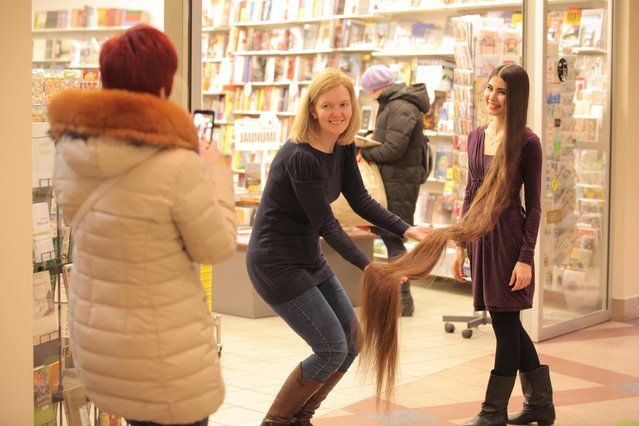 Aliia Nasyrova having someone hold up her 90 inch hair up on March 5, 2017 in Riga, Latvia. (Photo by  Eduard Kolik/Barcroft Media)