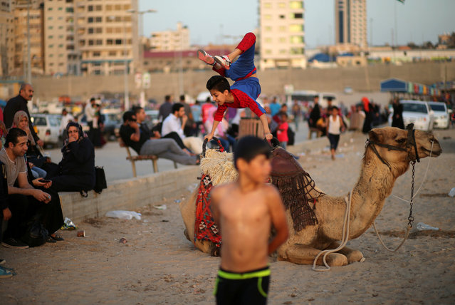 """Palestinian boy Mohamad al-Sheikh, 12, who is nicknamed """"Spiderman"""" and hopes to break the Guinness world records with his bizarre feats of contortion, demonstrates acrobatics skills on a camel at a beach in Gaza City June 2, 2016. (Photo by Mohammed Salem/Reuters)"""