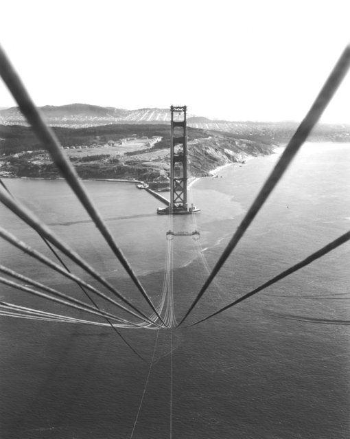 Cables suspended on the Golden Gate Bridge between the towers before being bound together to support the roadbed that will hang below them, San Francisco, California, circa 1935. (Photo by Underwood Archives/Getty Images)