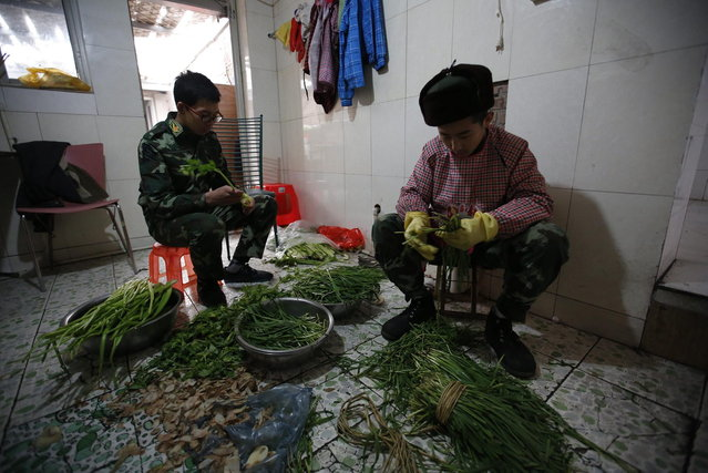 Students prepare vegetables as part of the education program at the Qide Education Center in Beijing February 19, 2014. The Qide Education Center is a military-style boot camp which offers treatment for internet addiction. (Photo by Kim Kyung-Hoon/Reuters)