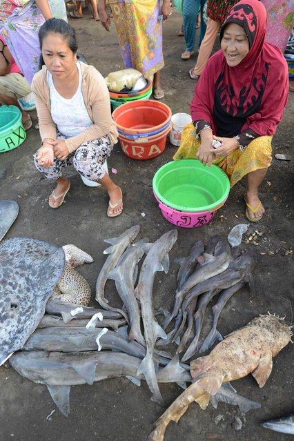 This picture taken on November 9, 2014 shows vendors selling freshly caught sharks at a traditional market in Tanjung Luar in Lombok, West Nusa Teggara. (Photo by Sonny Tumbelaka/AFP Photo)
