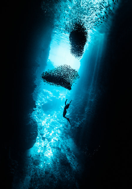 """This is Lisa free-diving in Swallows Cave, Tonga, the most beautiful stopover"". (Photo by Rita Kluge/The Guardian)"