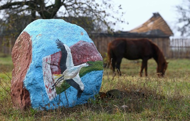 Belarusian national flag with the country's symbol, a white stork, are seen on a stone in the village of Slabazhanka, Belarus November 8, 2016. (Photo by Vasily Fedosenko/Reuters)