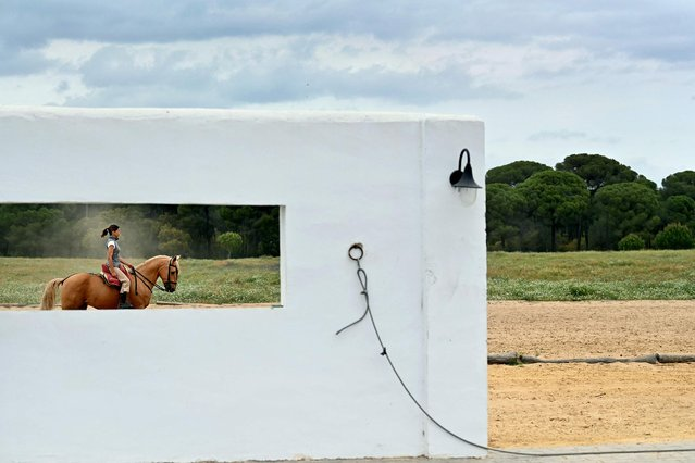 """French """"rejoneadora"""" (mounted bullfighter) Lea Vicens rides her horse during a training session in her """"finca"""" (ranch) near Hinojos, south of Seville, on April 14, 2021. (Photo by Gabriel Bouys/AFP Photo)"""