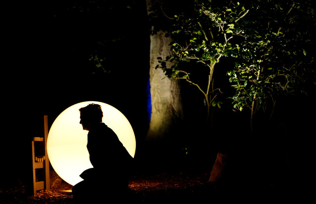 """A visitor poses by an illuminated sphere at the exhibit """"Enchanted: Forest of Light"""" at Descanso Gardens in La Canada Flintridge, California U.S., December 9, 2016. (Photo by Mario Anzuoni/Reuters)"""