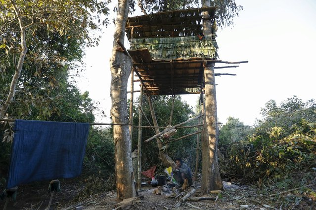 A man eats a meal under his tree house, which acts as a shelter from wild elephants, in Gwe Cho village, Shwe Taung Yan township Ayeyarwady division January 18, 2016. (Photo by Soe Zeya Tun/Reuters)