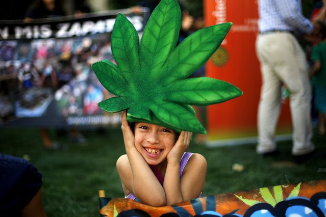 A child wearing a marijuana leaf hat poses during a rally in support of cultivation of cannabis for medicinal purposes in Chile, Santiago March 18, 2015. Several families gathered in front of the government palace in support of the use of the cannabis oil to their children sick with epilepsy, according to the organizers. (Photo by Ivan Alvarado/Reuters)