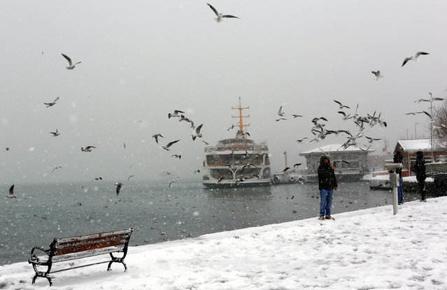 People feed seagulls by the Bosphorus during a snowfall in Istanbul, Turkey, January 7, 2017. (Photo by Murad Sezer/Reuters)