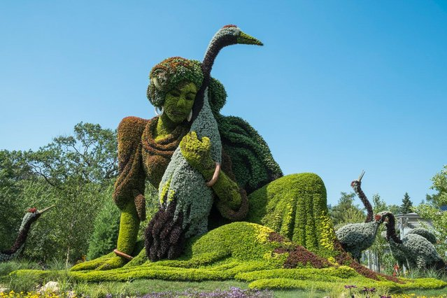 Monumental Plant Sculptures At The 2013 Mosaicultures Internationales De Montreal