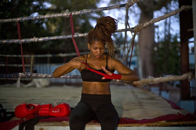 In this January 24, 2017 photo, boxer Idamerys Moreno wraps a bandage on her hand before a training session at a sports center in Havana, Cuba. Boxing has long been an athletic engine for Cuba, which has won 72 Olympic medals in that category but women are not allowed to box. (Photo by Ramon Espinosa/AP Photo)