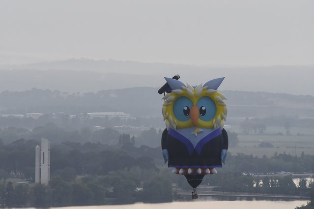 A hot air balloon in the shape of an owl flies on the 30th anniversary of Canberra's Balloon Spectacular festival in Australia's capital, March 14, 2016. (Photo by Lukas Coch/Reuters/AAP)