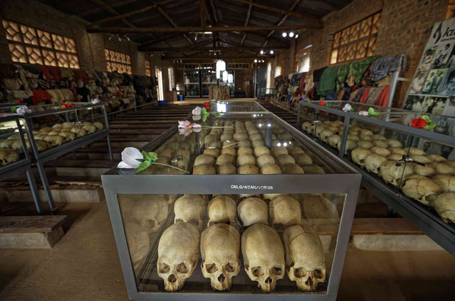 Skulls of some of those who were slaughtered as they sought refuge in the church sit in glass cases, kept as a memorial to the thousands who were killed in and around the Catholic church during the 1994 genocide, inside the church in Ntarama, Rwanda Friday, April 5, 2019. Rwanda will commemorate on Sunday, April 7, 2019 the 25th anniversary of when the country descended into an orgy of violence in which some 800,000 Tutsis and moderate Hutus were massacred by the majority Hutu population over a 100-day period in what was the worst genocide in recent history. (Photo by Ben Curtis/AP Photo)