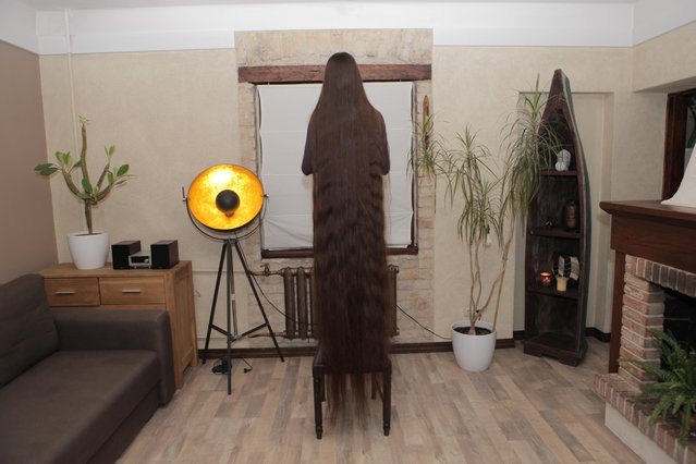 Aliia Nasyrova standing on a chair to show her hair's length on March 5, 2017 in Riga, Latvia. (Photo by  Eduard Kolik/Barcroft Media)