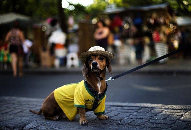 Caique, 7, wears a Brazilian national soccer jersey while he sits on a sidewalk in Rio de Janeiro. (Photo by Silvia Izquierdo/Associated Press)