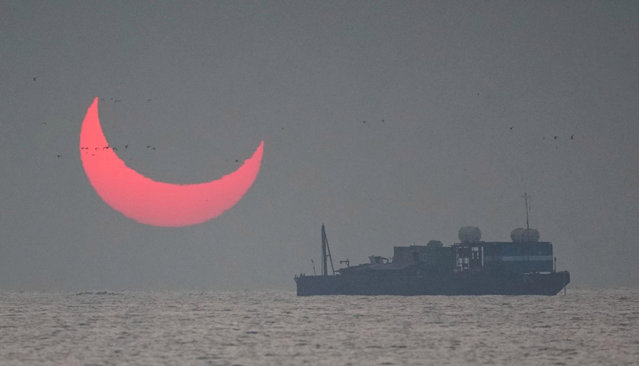 A photographer waited in just the right place to snap the rare spectacle as the sun was partially blocked by the moon at dawn. Elias Chasiotis had planned on capturing the solar eclipse on December 26, 2019 while on holiday in Al Wakrah, Qatar. And he knew because it came at sunrise he had a chance to capture an even rare phenomenon – a solar eclipse combined with the light-bending mirage effects seen near the surface of the ocean. (Photo by Elias Chasiotis/The Sun)