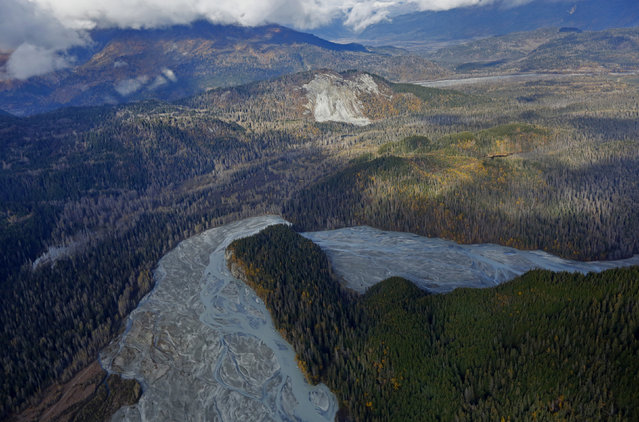 The Tsirku River winds through forest as seen in an aerial view near Haines, in southwestern Alaska, October 7, 2014. (Photo by Bob Strong/Reuters)