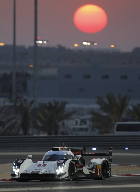 Audi Sport Team Joest driver Lucas Di Grassi of Brazil drives during the Six Hours of Bahrain race, part of the World Endurance Championship (WEC), at the Bahrain International Circuit in Sakhir south of Manama, November 15, 2014. (Photo by Hamad I Mohammed/Reuters)