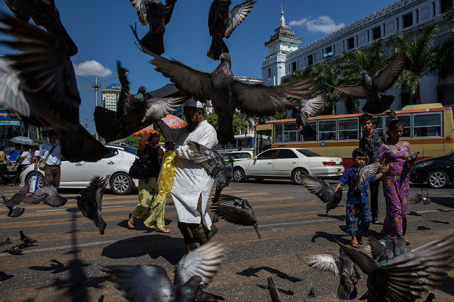 Pigeons fly over the sky in downtown ahead of the landmark November 8 elections on November 6, 2015 in Yangon, Burma. More than 30 million people will vote on Sunday in what has been billed as Myanmar's first free and fair election, a poll which will determine the scope of its democratic transition. (Photo by Lam Yik Fei/Getty Images)