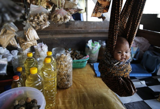 A baby is seen suspended in a cloth hammock at a food stall at Sungai Arut market in Pangkalan Bun, January 28, 2015. (Photo by Reuters/Beawiharta)