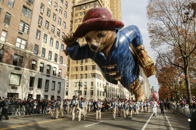 The Paddington Bear balloon floats down Central Park West during the 90th annual Macy's Thanksgiving Day Parade on November 24, 2016 in New York. (Photo by Kena Betancur/AFP Photo)
