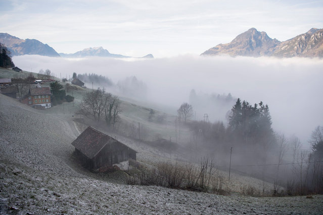 A sea of fog covers the Lake Lucerne near Seelisberg, canton of Uri, Central Switzerland, 13 December 2016. (Photo by Urs Flueeler/EPA)
