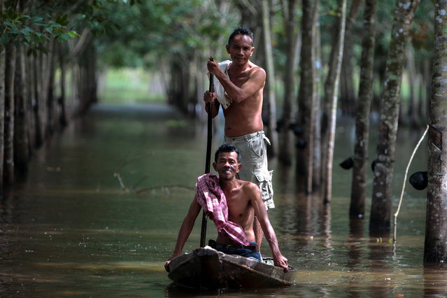 Phon Tongmak, a rubber tree farmer (back), rows a boat in floodwaters in his rubber plantation with his friend at Cha-uat district in Nakhon Si Thammarat Province, southern Thailand, January 18, 2017. (Photo by Surapan Boonthanom/Reuters)