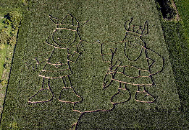 Vicky the Viking, left, and his father Halvar are cut in a cornfield labyrinth in the outskirts of Frankfurt, Germany, Monday, September 6, 2021. Vicky and Halvar are based on the novel Vicke Viking (1963) written by the Swedish author Runer Jonsson. (Photo by Michael Probst/AP Photo)