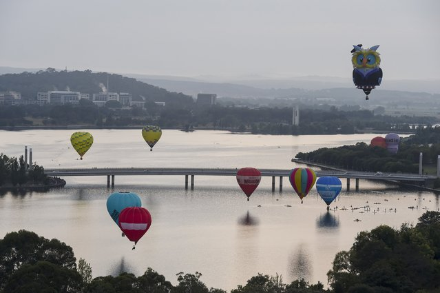 Hot air balloons, including one in the shape of an owl fly, over Lake Burley Griffin on the 30th anniversary of the Canberra Balloon Festival in Australia's capital, March 14, 2016. (Photo by Lukas Coch/Reuters/AAP)