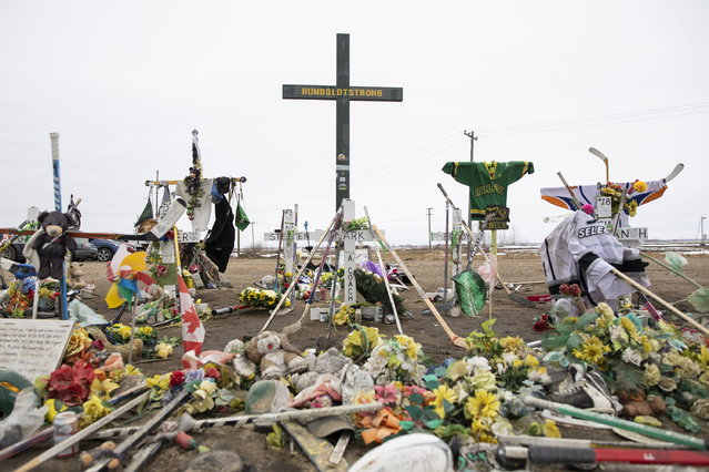 A memorial is displayed for the victims of the Humboldt Broncos junior hockey team bus crash on the corner of highway 35 and highway 335 near Codette, Saskatchewan, Canada, on Saturday, April, 6, 2019. The Broncos' bus collided with a semi driven by a novice trucker who ran a stop sign at the rural intersection one year ago Saturday. Sixteen people killed and 13 injured. (Photo by Kayle Neis/The Canadian Press via AP Photo)