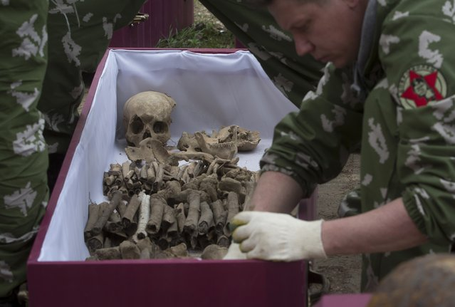 In this photo taken Thursday, May 7, 2015 photo, a member of an excavation team puts remains of a Soviet soldier killed during World War II in a coffin prior to a reburial ceremony at the Sinyavino Heights memorial near the village of Sinyavino, 50 km (31 miles) east of  St. Petersburg, Russia. (Photo by Dmitry Lovetsky/AP Photo)