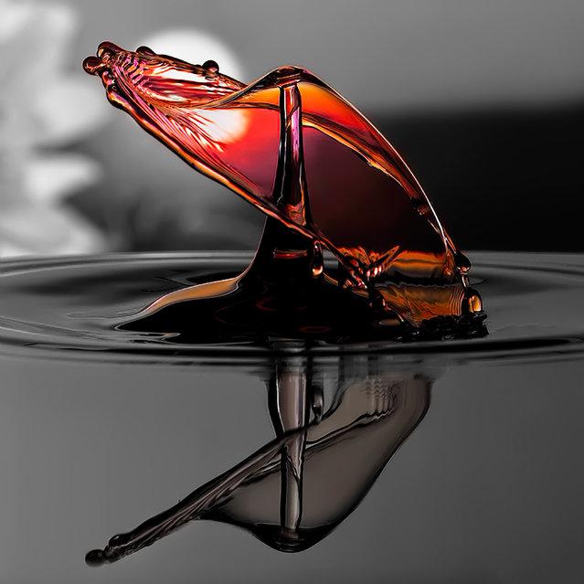 Looks like an amber mushroom. (Photo by Ronny Tertnes/TwoByTwoEditorial.co.uk)