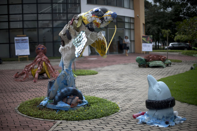 Sculptures of dolphins made with trash are exhibited at the Rio de Janeiro Federal University in Rio de Janeiro, Brazil, Monday, June 1, 2015. Art students have taken advantage of a material they have in endless supply trash to create an exhibition that aims to draw attention to the fetid state of the city's Guanabara Bay, where the Olympic sailing events are to be held next year. (AP Photo/Silvia Izquierdo)