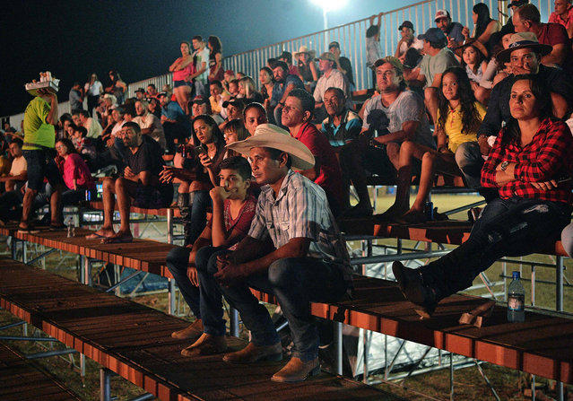 Spectators attend a rodeo event in Monte Negro, south of the Amazon basin, Rondonia state, Brazil on August 30, 2019. (Photo by Carl De Souza/AFP Photo)