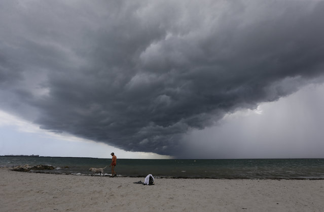 Arnie Powell walks along the beach with his pet dog, Biscuit, as rain clouds approach Hobie Beach, Wednesday, July 22, 2015, in Key Biscayne, Fla. (Photo by Alan Diaz/AP Photo)