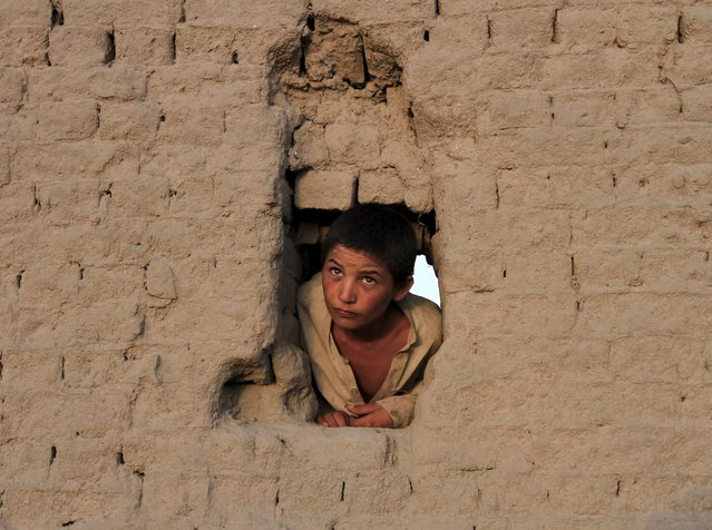 An Afghan boy looks on from a hole in a wall on the outskirts of Jalalabad city, Afghanistan August 4, 2015. (Photo by Reuters/Parwiz)