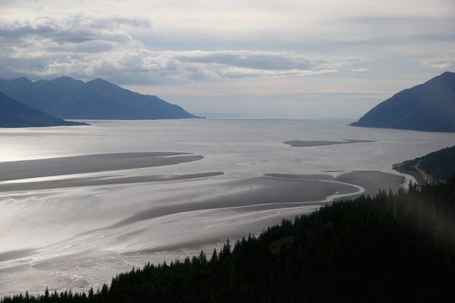 A general view of Cook Inlet before the Bore Tide at Turnagain Arm on July 12, 2014 in Anchorage, Alaska. Alaskas most famous Bore Tide, occurs in a spot on the outside of Anchorage in the lower arm of the Cook Inlet, Turnagain Arm, where wave heights can reach 6-10 feet tall, move at 10-15 mph and the water temperature stays around 40 degrees farenheit. This years Supermoon substantially increased the size of the normal wave and made it a destination for surfers. (Photo by Streeter Lecka/Getty Images)