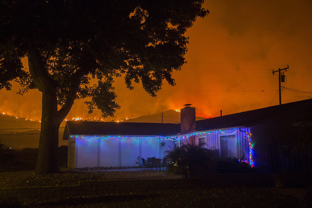 Christmas decorations illuminate a house as the growing Thomas Fire advances toward Santa Barbara County seaside communities on December 10, 2017 in Carpinteria, California. The Thomas Fire has grown to 173,000 acres and destroyed at least 754 structures so far. Strong Santa Ana winds have been feeding major wildfires all week, destroying houses and forcing tens of thousands of people to evacuate. (Photo by David McNew/Getty Images)