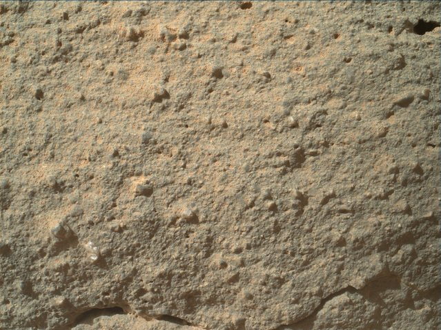 "Scientists say that a ""Martian flower"", seen here in an image from the Curiosity rover's Mars Hand Lens Imager, is a 2-millimeter-wide grain or pebble that's embedded in the surrounding rock. Another, darker-colored mineral grain can be seen above and to the left. (Photo by NASA)"