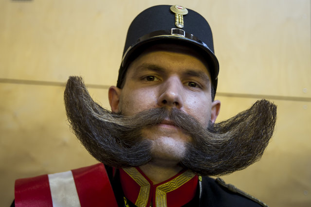 A contestant of the World Beard And Mustache Championships poses for a picture during the Championships 2015 on October 3, 2015 in Leogang, Austria. (Photo by Jan Hetfleisch/Getty Images)