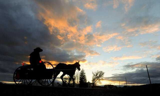 An Amish farmer rides in a horse drawn cart west along Route 254 in Washingtonville, Pa. Thursday, October 30, 2014, as the sunset. (Photo by Jimmy May/AP Photo/Bloomsburg Press Enterprise)